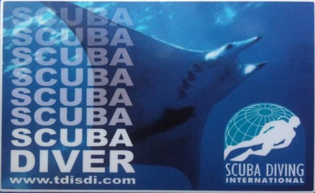 TDISDI OW Scuba Diver