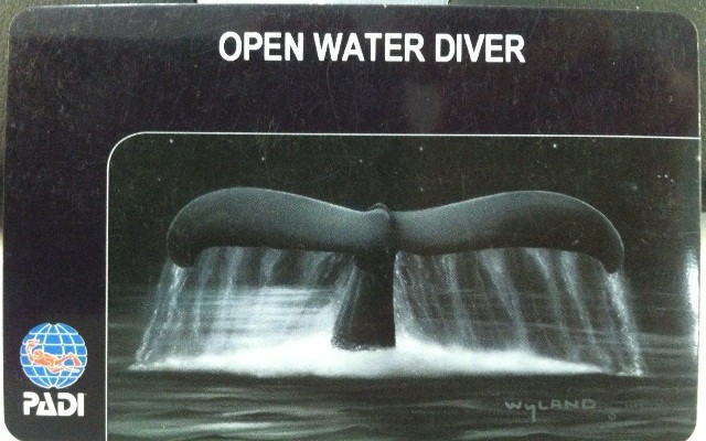 Diver Certification Card Front
